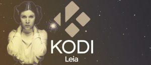 [ANDROID TV] L'évolution de KODI : 14 Helix, 15 Isengard, 16 Jarvis, 17 Krypton et enfin 18 Leia l'évolution de kodi : 14 helix, 15 isengard, 16 jarvis, 17 krypton et enfin 18 leia - kodi18 leia 300x130 - [ANDROID TV] L'évolution de KODI : 14 Helix, 15 Isengard, 16 Jarvis, 17 Krypton et enfin 18 Leia - idroid.fr